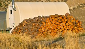 Firewood Supply Stock Photography