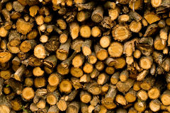 Firewood texture Stock Images