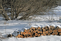 Firewood to be split stacked under the snow. Image of a stack of firewood waiting to be split Stock Photo