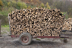 Firewood on a trailer Royalty Free Stock Images