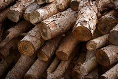 Firewood trunks Royalty Free Stock Photo