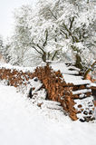 Firewood under snow Royalty Free Stock Photography