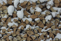 Firewood under snow close up. Wood texture. White, Yellow. Russia. Siberia. Stock Photography