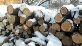 Firewood under the snow Royalty Free Stock Image