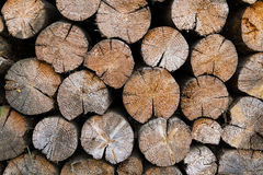 Firewood warehouse Royalty Free Stock Photography