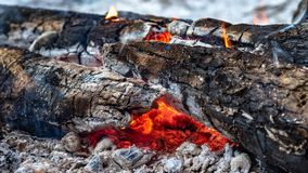 Burning firewood in the fire stock photo