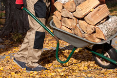 Firewood on the wheelbarrow Stock Image