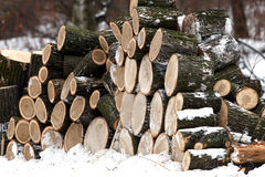 Firewood in winter forest Stock Photos