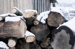 Firewood in Winter Season Royalty Free Stock Images
