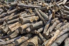 Firewood Stock Photos