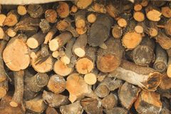 Wood in the woodpile. Firewood in the woodpile, stacks of firewood, pile of firewood stock photography