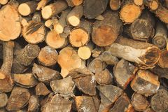 Wood in the woodpile. Firewood in the woodpile, stacks of firewood, pile of firewood stock image