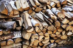 Firewood in the yard royalty free stock photos