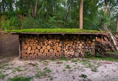 Firewoods在机盖下 免版税库存照片