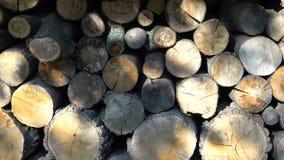 firewoods背景  股票视频