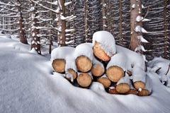 Firewoods Stock Image