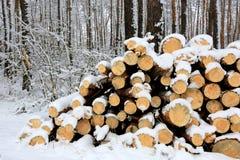 Firewoods Foto de Stock Royalty Free