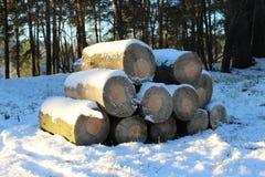 Firewoods 库存照片