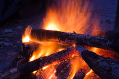 Firewoods burn on a fire Stock Photography