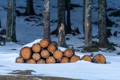 Firewoods Stock Photos