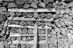 Woods logs firewoods texture shapes. royalty free stock image