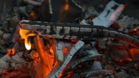 Firewoodsbrandwonden in de brand stock video