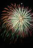 Firework. In the full bloom of fireworks in the darkness Royalty Free Stock Photos