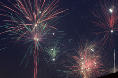 Firework Royalty Free Stock Photos