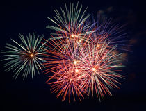 Firework. Festive firework. Celebrate of independent day royalty free stock photo