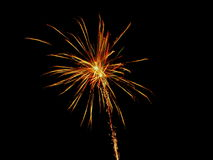Firework. During the pyrotechnical show Royalty Free Stock Images