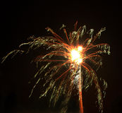 Firework 3. Exploded rocket firework against the night sky Royalty Free Stock Photos