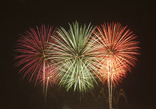 Firework. Display during new year celebration Stock Photos