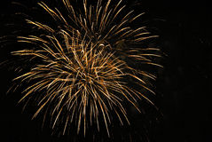 firework Fotos de Stock