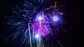 firework almacen de metraje de vídeo