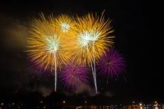 firework Fotografia Stock Libera da Diritti