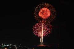 firework Fotos de archivo