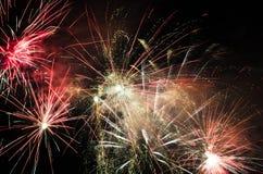 firework Imagem de Stock
