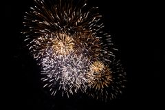 Firework #8 Royalty Free Stock Photos