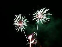 firework fotos de stock royalty free