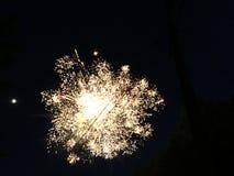 firework foto de stock