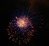 Firework. Amusement entertainment fun at night stock image