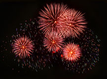 Firework. Background. Celebrating New year royalty free stock photography