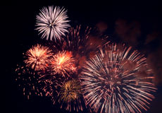 Firework background Royalty Free Stock Image