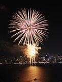 Firework in Bay royalty free stock image