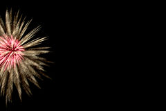 Firework. On black background with copy space Royalty Free Stock Photos