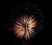 Firework in black night sky Royalty Free Stock Image