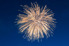 Firework on blue sky Stock Images