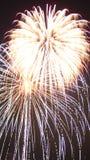 Firework Burst. Independence day fireworks display, double burst Royalty Free Stock Images