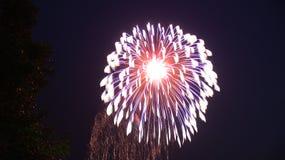 Firework Burst. Independence day fireworks display, large burst Stock Images