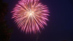 Firework Burst Royalty Free Stock Images